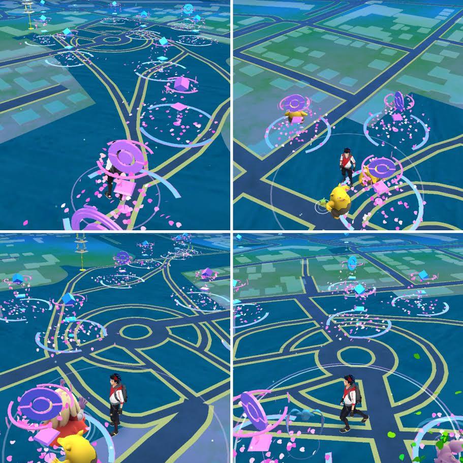 Spot chelles Pokémon GO